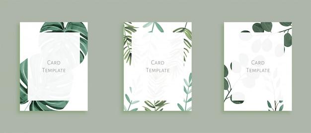 Zestaw nowoczesnych szablonów kart z dzikich liści