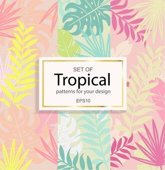 Zestaw nowoczesnych tła tropikalnych dla projektu.