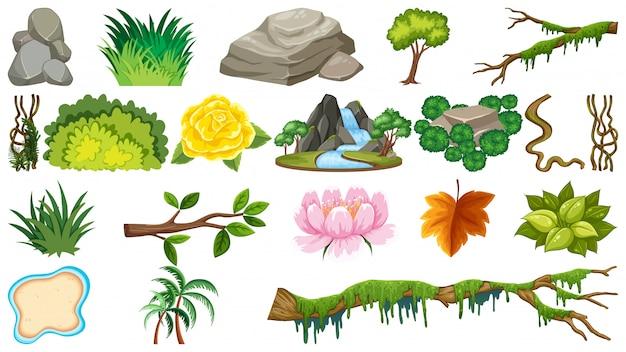Zestaw obiektów naturalnych