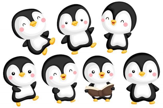 Zestaw obrazów pingwina