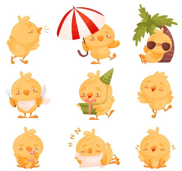 Zestaw obrazów ślicznych małych kurczaków