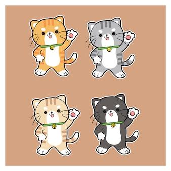 Zestaw odmian ślicznych kotów