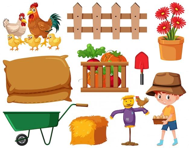Zestaw ogrodniczy z kurczakami i sprzętem