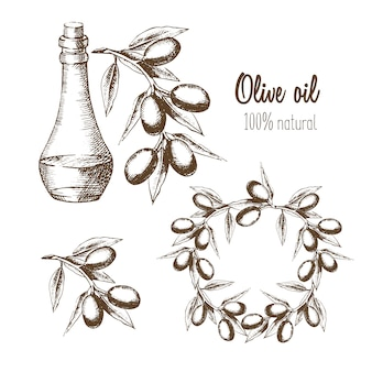 Zestaw oliwy z oliwek, gałęzi i wieńców. naturalny produkt. ilustracja w szkicu stylu graficznego.
