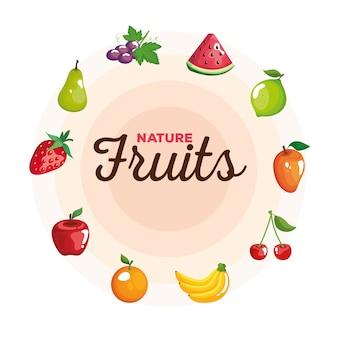Zestaw owoców koło, ilustracja tematu zdrowej żywności ekologicznej