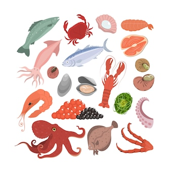 Zestaw Owoców Morza. Ryby I Kraby, Krewetki I Ośmiornice. Premium Wektorów