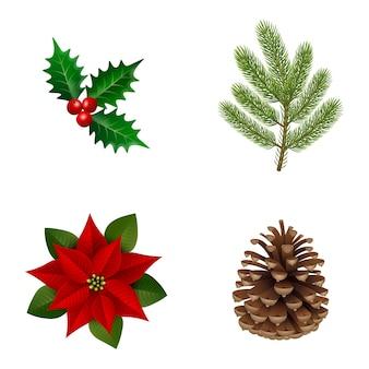 Zestaw ozdobnych roślin bożonarodzeniowych. ostrokrzew, gałąź sosny, poinsecja i szyszka