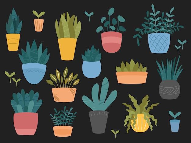 Zestaw ozdobnych roślin doniczkowych ogrodowych do wnętrz i na zewnątrz. kolekcja doniczek o różnych kształtach. ręcznie rysowane kreskówki