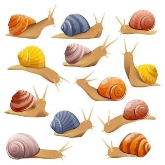 Zestaw ozdobnych ślimaków