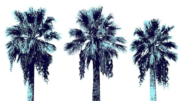 Zestaw palm graficznych