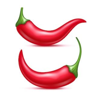 Zestaw papryczek chili.
