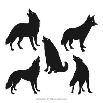 Zestaw pięciu sylwetek wilka