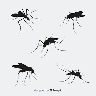 Zestaw pięciu sylwetki komarów