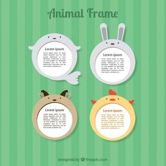 Zestaw piękne ramki na zwierzętach