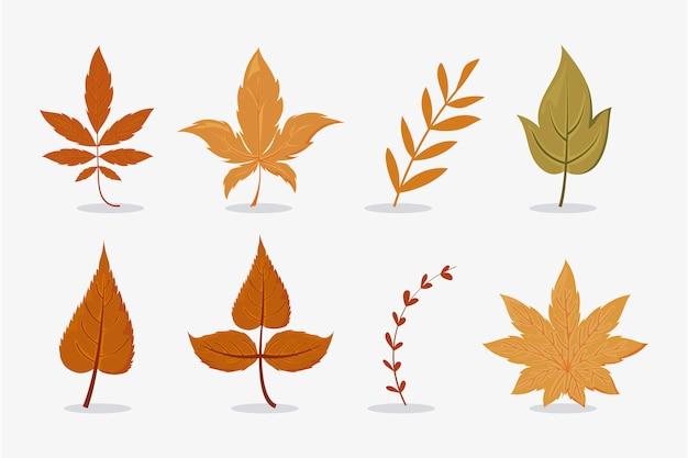 Zestaw pięknych i kolorowych liści jesienią na białym tle