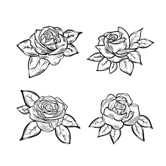 Zestaw pięknych ilustracji róż