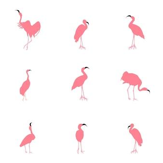 Zestaw pięknych kolorowych ilustracji wektorowych flamingów w różnych pozach