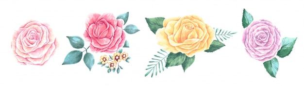 Zestaw pięknych kwiatów