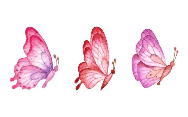Zestaw pięknych motyli na białym tle