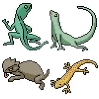 Zestaw pikseli sztuki jaszczurki na białym tle