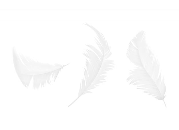 Zestaw piór biały ptak lub anioł w różnych kształtach, na białym tle