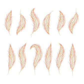 Zestaw piór jest rysowane ręcznie