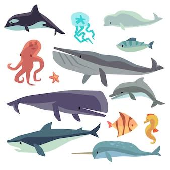 Zestaw płaski ryb morskich i zwierząt morskich. delfin i wieloryb, rekin i ośmiornica, meduza i morze