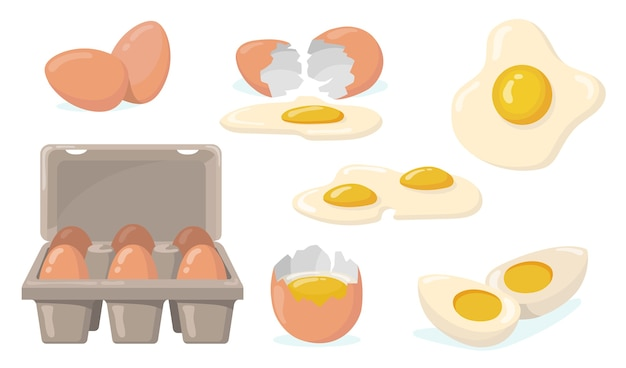 Zestaw płaskich elementów surowych, połamanych, gotowanych i smażonych jajek. kreskówka krajowych jaj kurzych z żółtkiem na białym tle kolekcja ilustracji wektorowych. ekologiczne produkty rolne i koncepcja żywności
