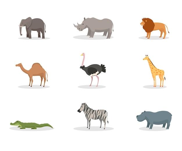 Zestaw płaskich ilustracji egzotycznych dzikich zwierząt. afrykańska fauna dżungli, różnorodność gatunków, tropikalny rezerwat przyrody, zoo, rezerwat dzikiej przyrody. słoń, ssaki nosorożców, lew, krokodyl