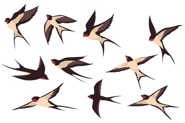 Zestaw płaskich ilustracji kolorowe latające jaskółki.