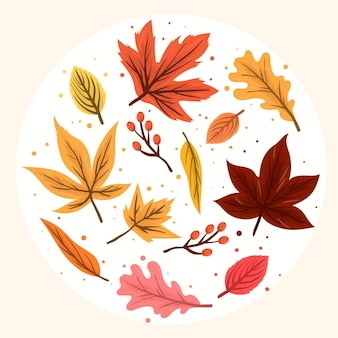 Zestaw płaskich liści leśnych