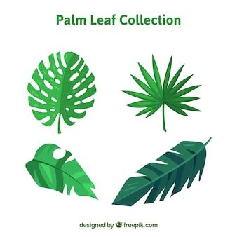 Zestaw płaskich liści palmowych w zielonych kolorach