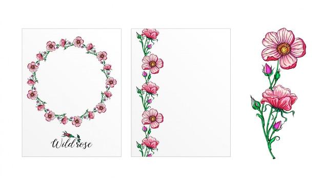 Zestaw pocztówek z kwiatami róży. różowe kwiaty. róża.