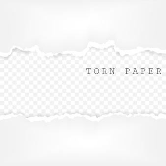 Zestaw podartych pasków papieru. tekstura papieru z uszkodzoną krawędzią na przezroczystym tle.