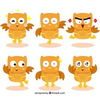 Zestaw pomarańczowy kreskówka sowy