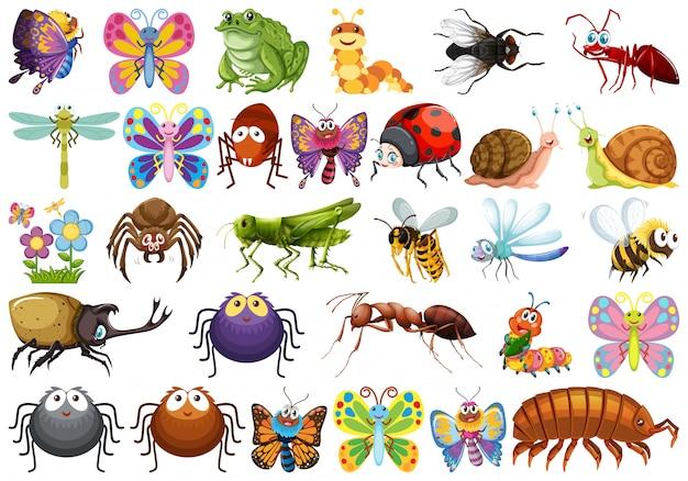 Zestaw postaci owadów