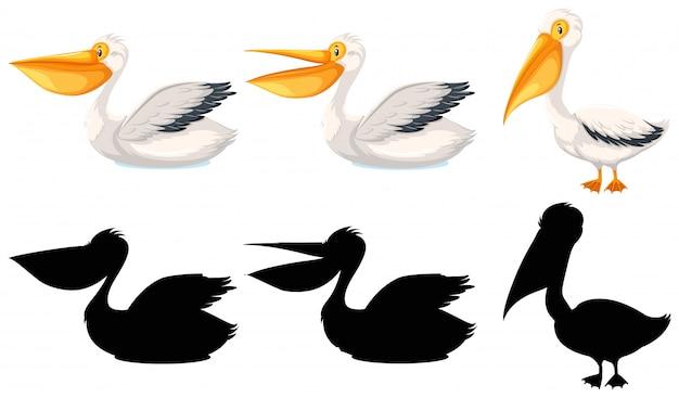 Zestaw postaci pelikana