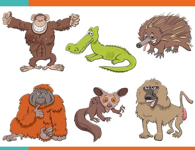 Zestaw postaci z kreskówek śmieszne dzikie zwierzęta