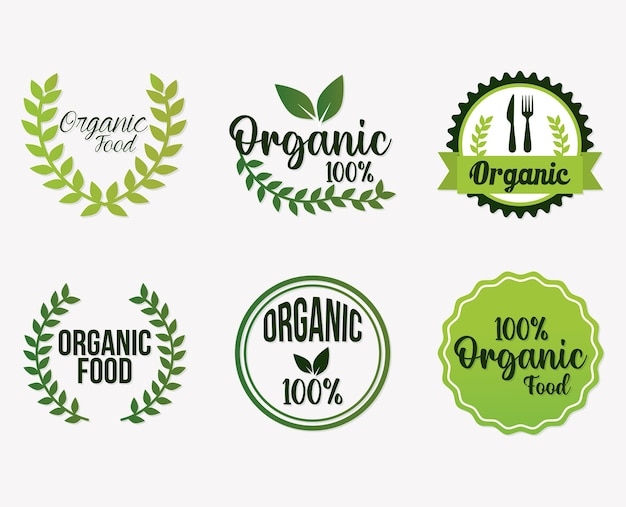 Zestaw projektowania ilustracji napis ekologicznej żywności