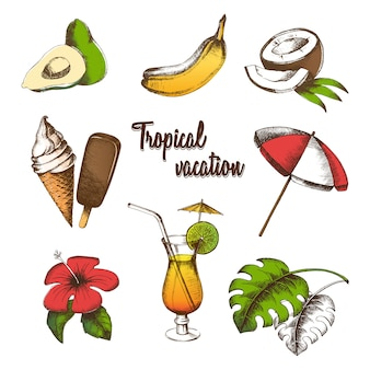 Zestaw przedmiotów na tropikalne wakacje. letnie owoce, koktajl, lody, tropikalny kwiat, liść palmowy, parasol malowany w stylu graficznym. wielokolorowy rysunek odręczny.