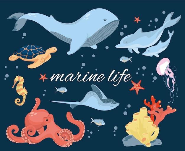 Zestaw przedstawiający życie morskie żyjące w oceanie. zwierzęta morskie.