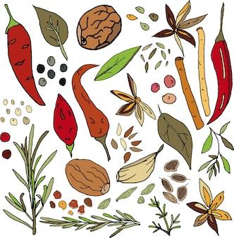 Zestaw przypraw papryka chili czarny i różowy groszek liście laurowe bazylia gałka muszkatołowa tymianek rozmaryn