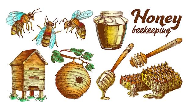 Zestaw pszczelarski pasieki koloru miodu.