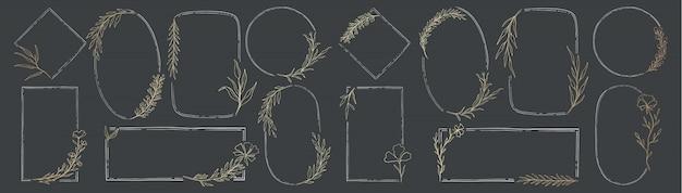 Zestaw ramek natura roślina. wystrój elementu botanicznego. styl vintage elegante.
