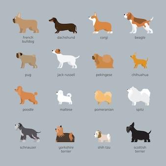 Zestaw ras psów, mały i średni rozmiar, widok z boku