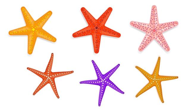 Zestaw realistycznej rozgwiazdy z różnymi kolorami izolowanymi