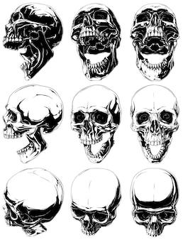 Zestaw realistycznych czarnych i białych ludzkich czaszek