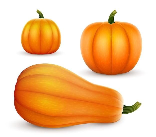 Zestaw realistycznych dyń o różnych kształtach halloween i święto dziękczynienia
