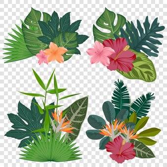 Zestaw realistycznych kwiatów tropikalnych kolekcji