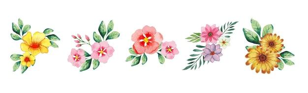 Zestaw ręcznie robionych akwareli sztuki kwiatowej